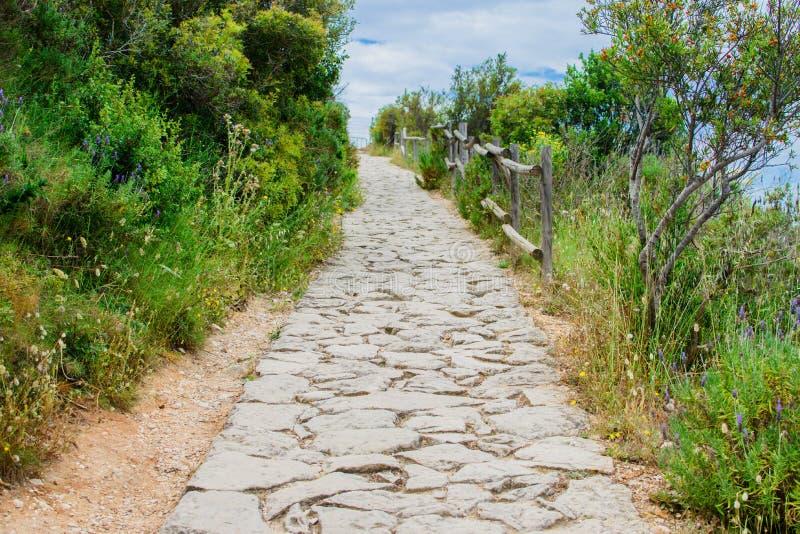 Longue route en pierre photo stock