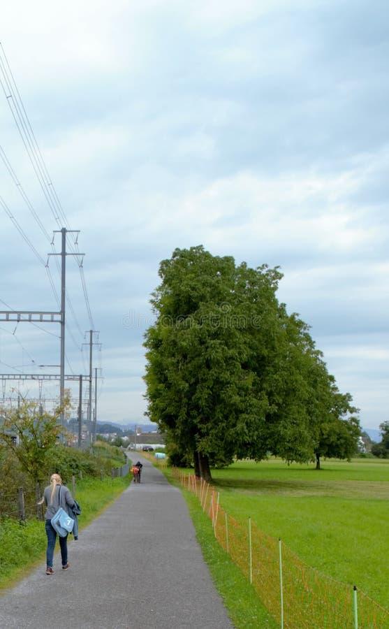 Longue route le long d'un pré vert, sur le chemin à Pfäffikon SZ photo stock