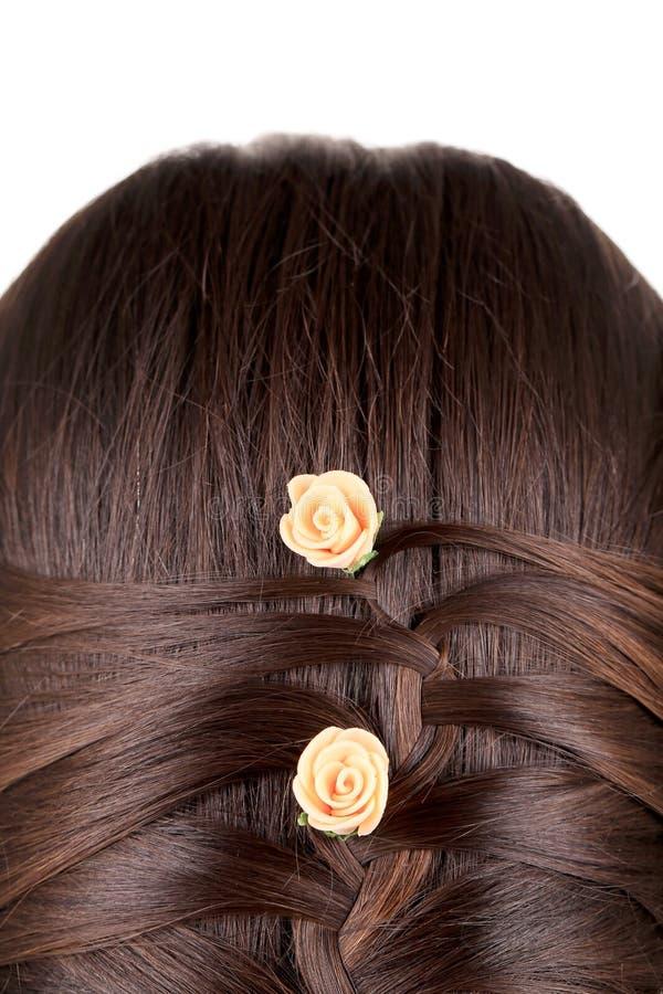 Longue tresse de cheveux de Brown. photographie stock libre de droits