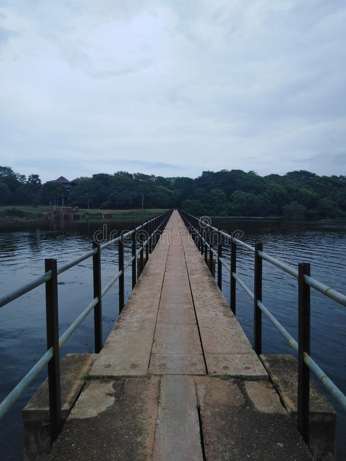 Longue voie vers la forêt entre le lac photographie stock