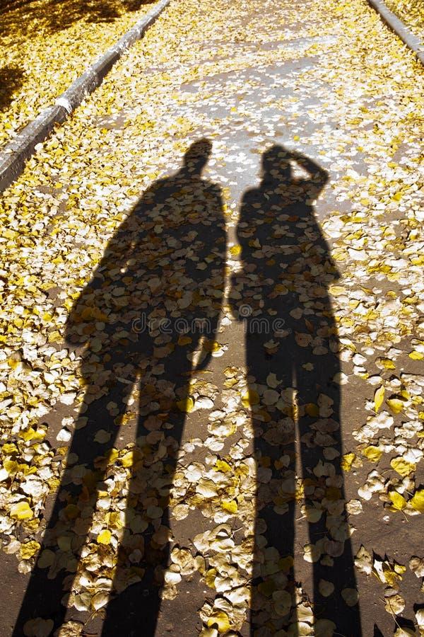Longues ombres sur un chemin jaune d'automne images stock