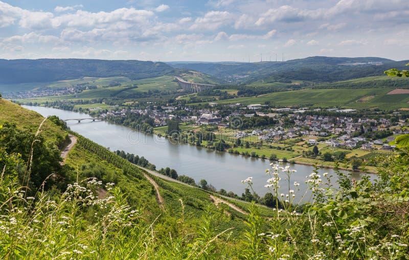 Longuich на Мозель Германии Европе стоковая фотография