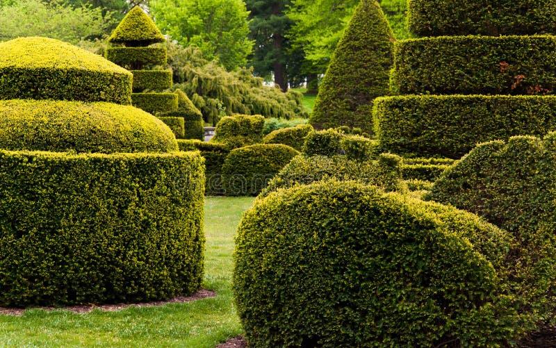 Longwood庭院的修剪的花园庭院, PA。 图库摄影