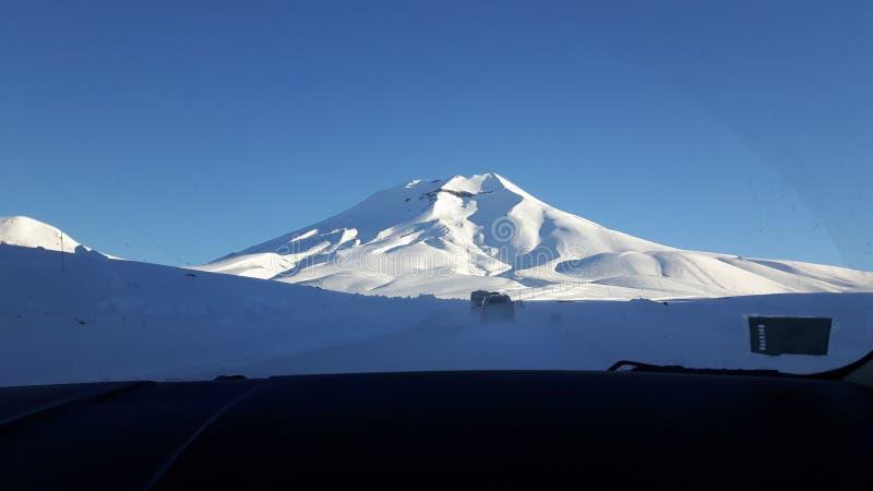 lonquimay volcan 库存图片