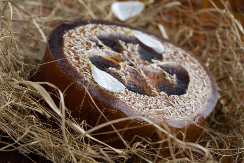 loofah φυσικό σαπούνι στοκ εικόνες