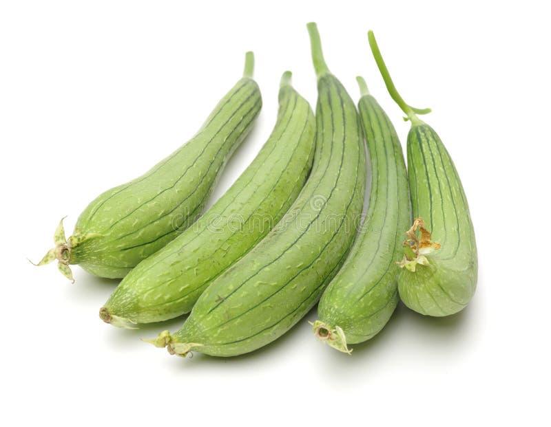 Loofah frais d'isolement sur le blanc Il est très riche en valeur nutritive Il peut non seulement comestible, mais avoir égalemen photos libres de droits