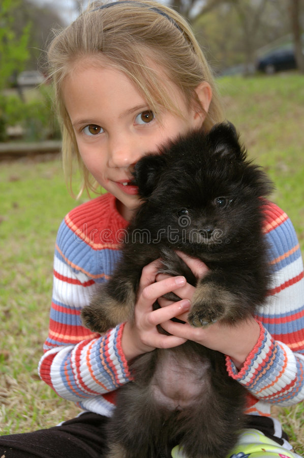 Look at my Pomeranian. Little girl holds up her pomeranian puppy and they both look at the camera stock photos