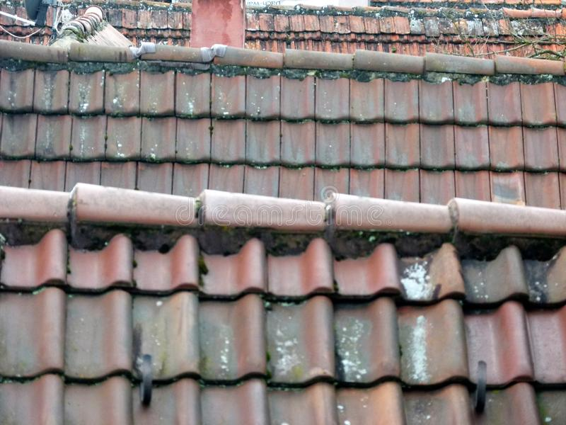 Several tiled roofs in tele-perspective royalty free stock photo