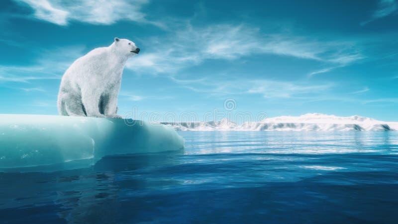 Look polare illustrazione vettoriale