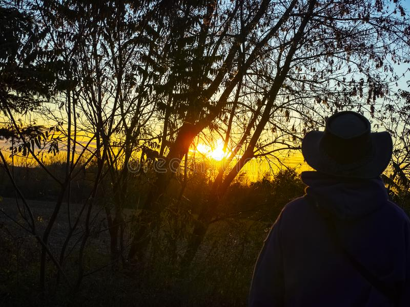 Look on the sunset. royalty free stock photography