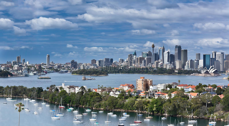 Sydney harbour panorama royalty free stock image