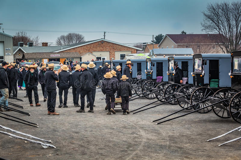 Looking at Amish Buggies for Sale royalty free stock photography