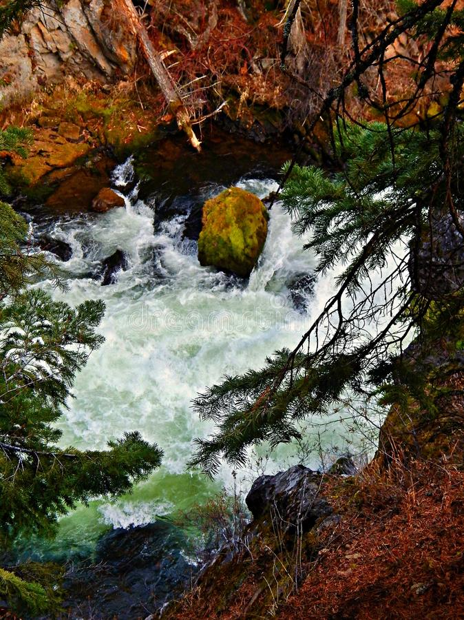 Peering Down At the Falls. Looking down at Benham Falls - on the Deschutes River - near Sunriver, OR stock image