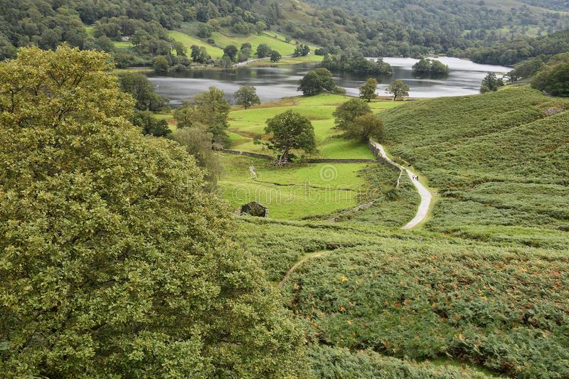 Looking down to path by Rydal Water, Lake District royalty free stock image