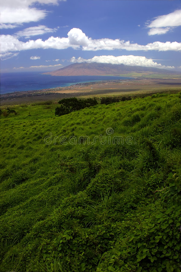 Free Looking Down On Maui Island Royalty Free Stock Image - 272106