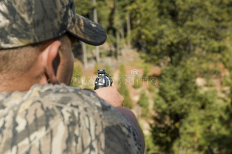 Download Looking down the sights stock image. Image of target, pistol - 3592689