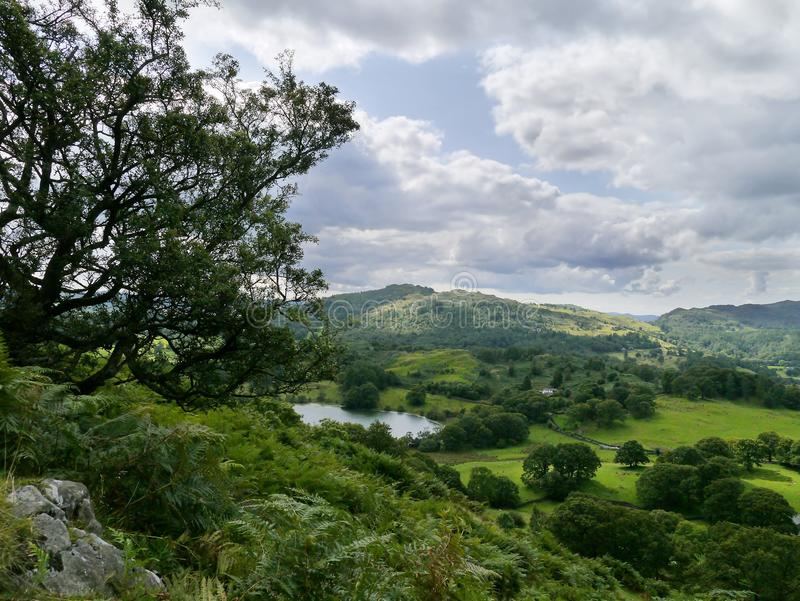 Looking down to Loughrigg tarn. Loughrigg tarn viewed from the side of Loughrigg fell stock photos