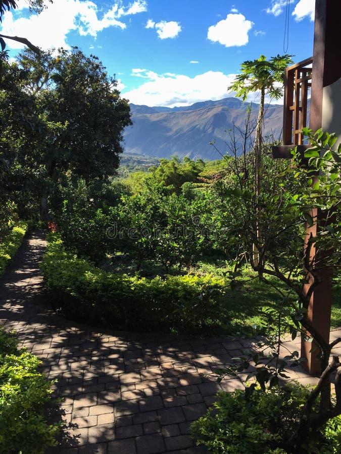 Looking down into the Yunguilla Valley, Ecuador stock image