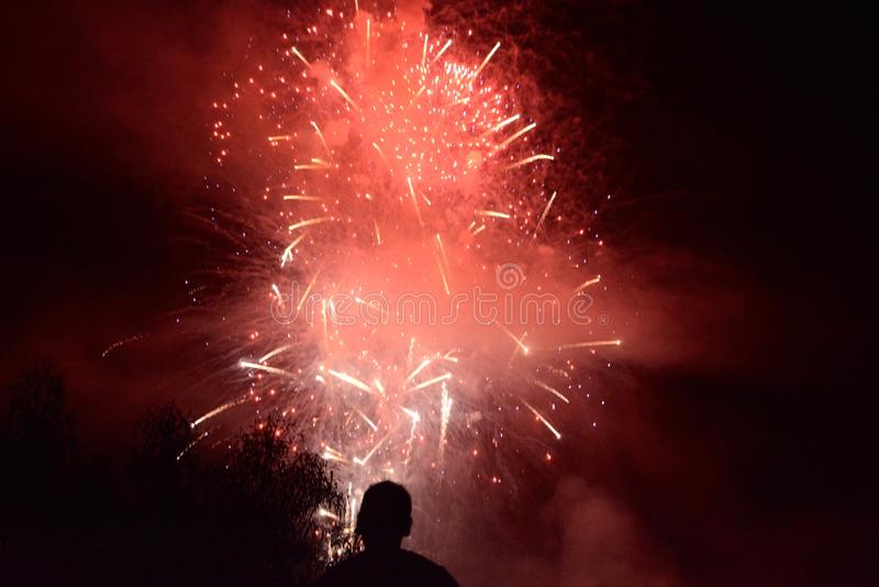 Looking at Fireworks royalty free stock images