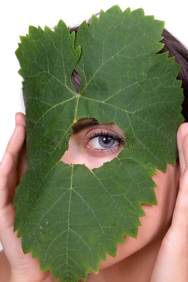 Looking through a hole. Green tree leaf with a female eye peeping through stock photos