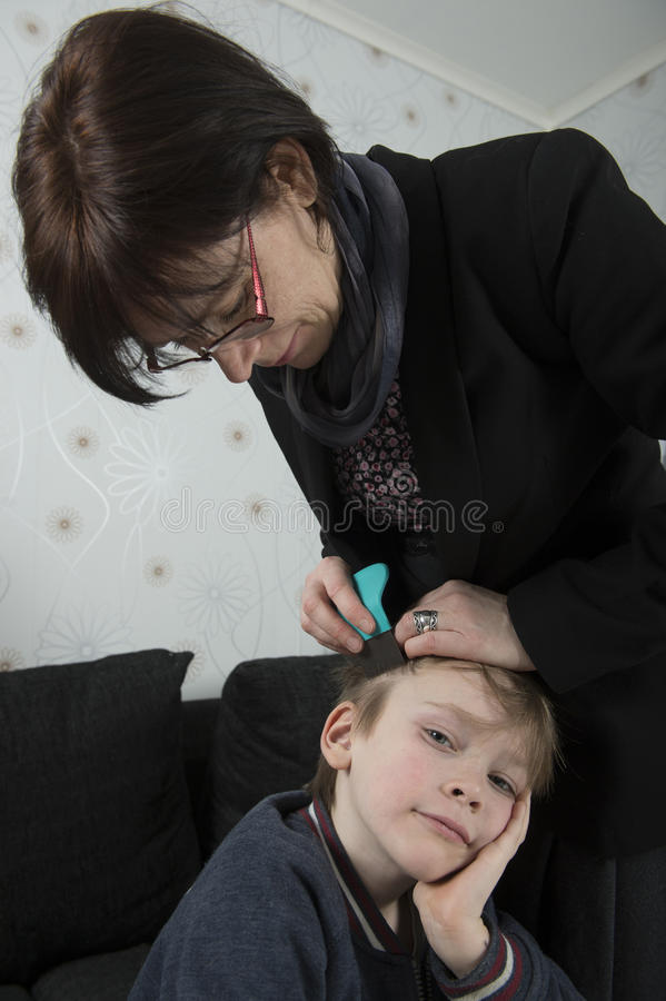 Looking for lice on childs head stock photos