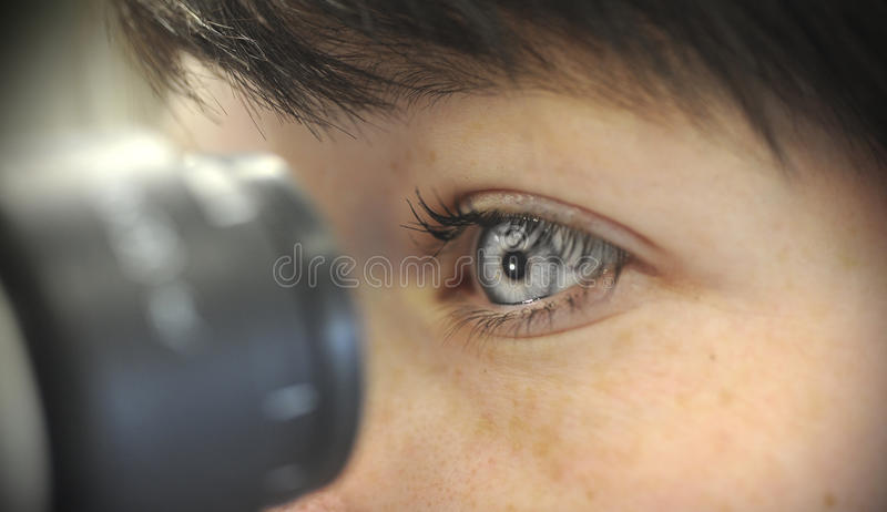 Download Looking in microscope stock photo. Image of discovery - 17828180