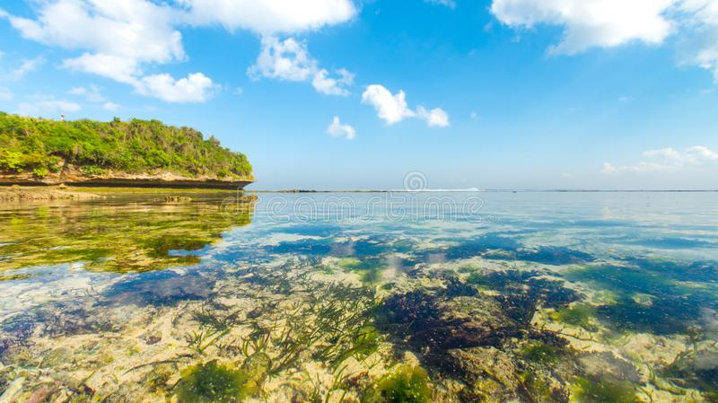 Looking out at the horizon from the shoreline of a tropical beach in Asia with crystal clear shallow water stock photography