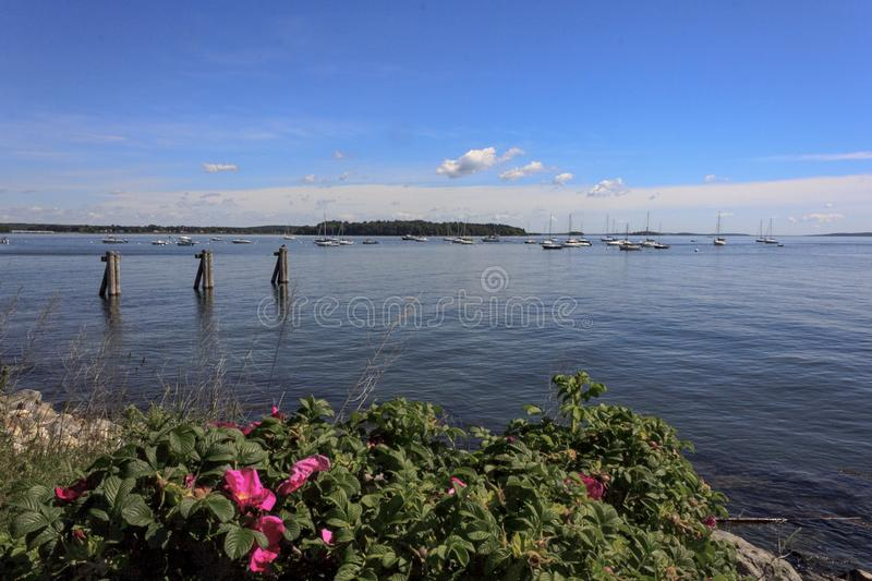 Looking out over Casco Bay in Portland Maine royalty free stock photo