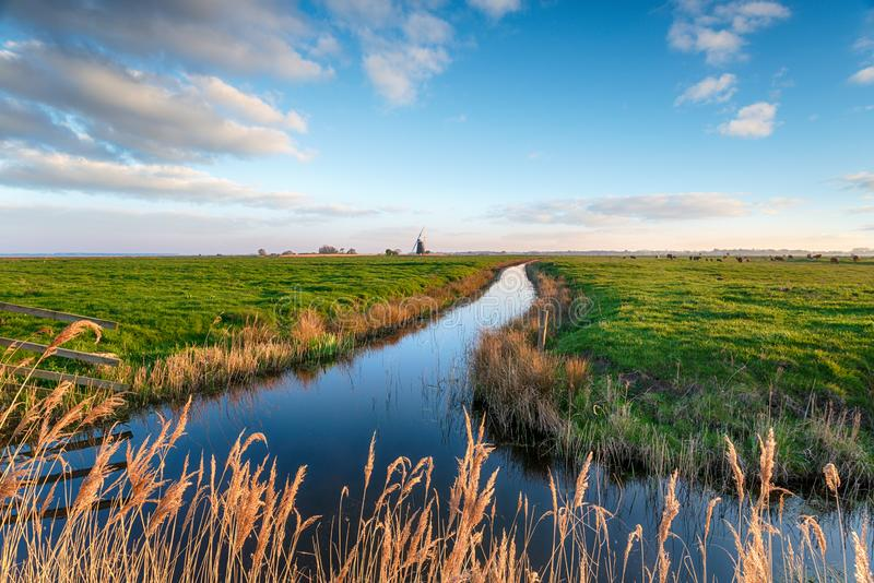 Looking out over Halvergate Marshes to Mutton`s Mill stock images