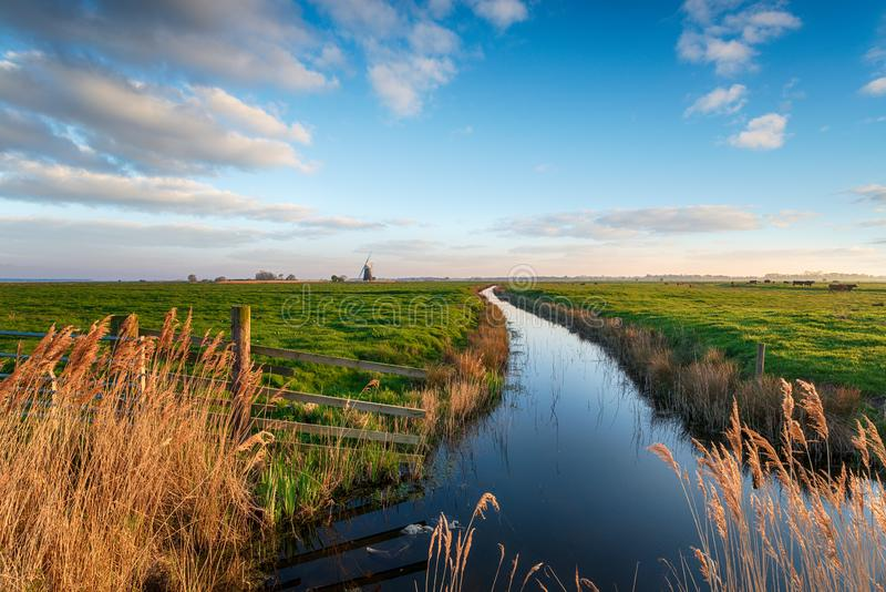 Looking out to Halvergate Mill on Berney Marshes royalty free stock photography