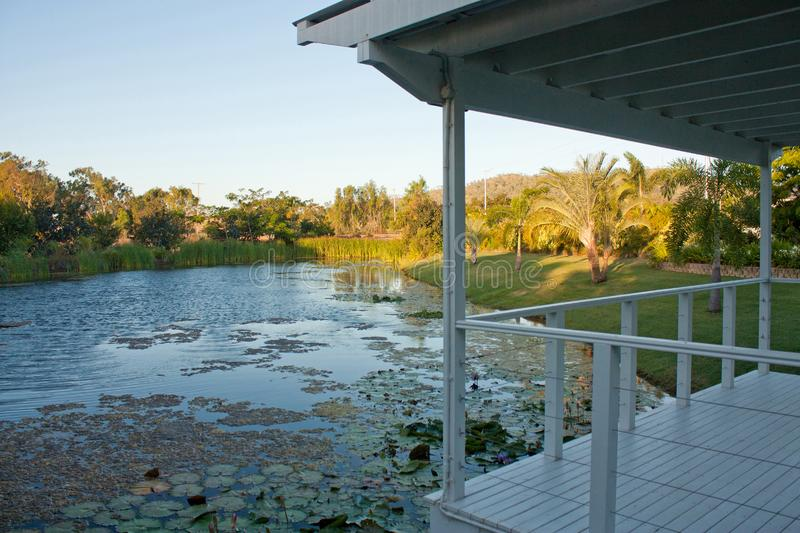 Looking at a pond from a white garden house / gazebo / arbour in Queensland, Australia. During a sunset reed water water-lily warm lake bud bloom petal nature stock photo
