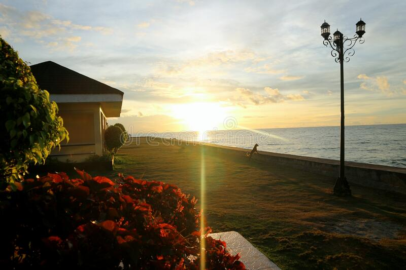 Looking at the Sunrise in the Bay of Southern Cebu. Waiting Shed, Grass, Flowers, Lamppost, Dog and Sunrays. royalty free stock photography
