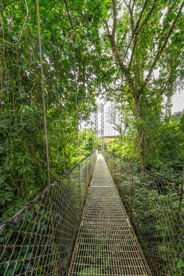 Looking to the end of the long rope bridge over the jungle canopy. In Mistico Park Costa Rica royalty free stock image