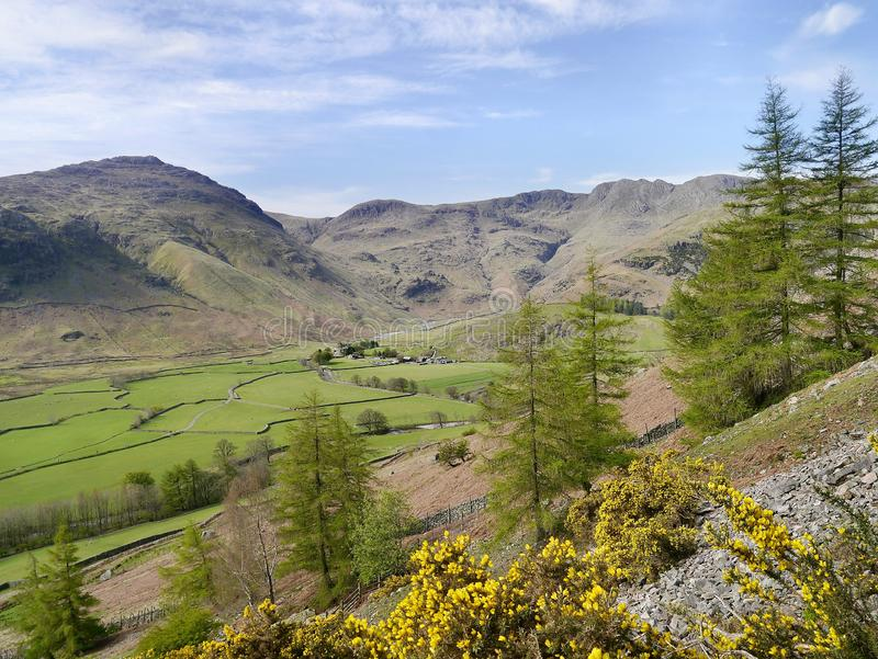 Head of Great Langdale, Lake District. Looking to the head of Great Langdale valley across fields and from rocky hillside stock photo