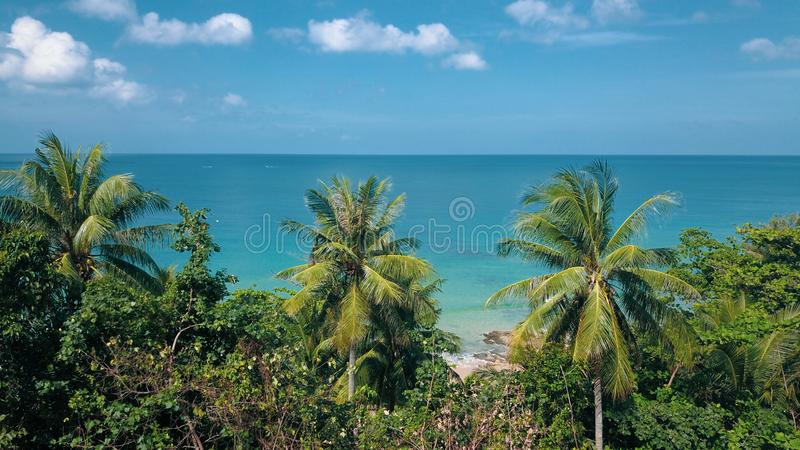 Looking through tropical tree leaves at the beautiful lagoon sea water and summer cloudy sky. Summer and travel vacation concept stock images
