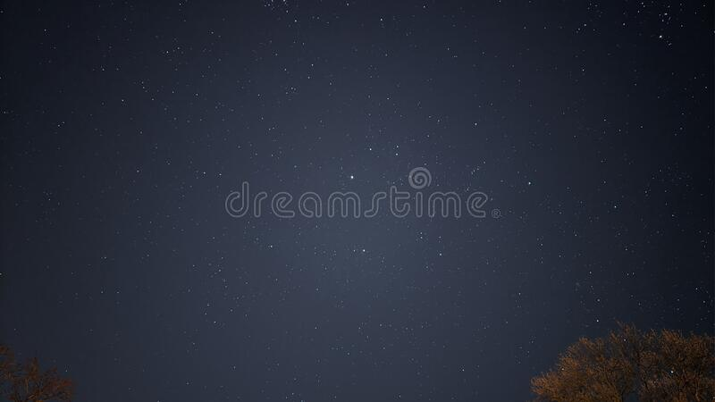 Looking up at the night sky star gazing. royalty free stock images