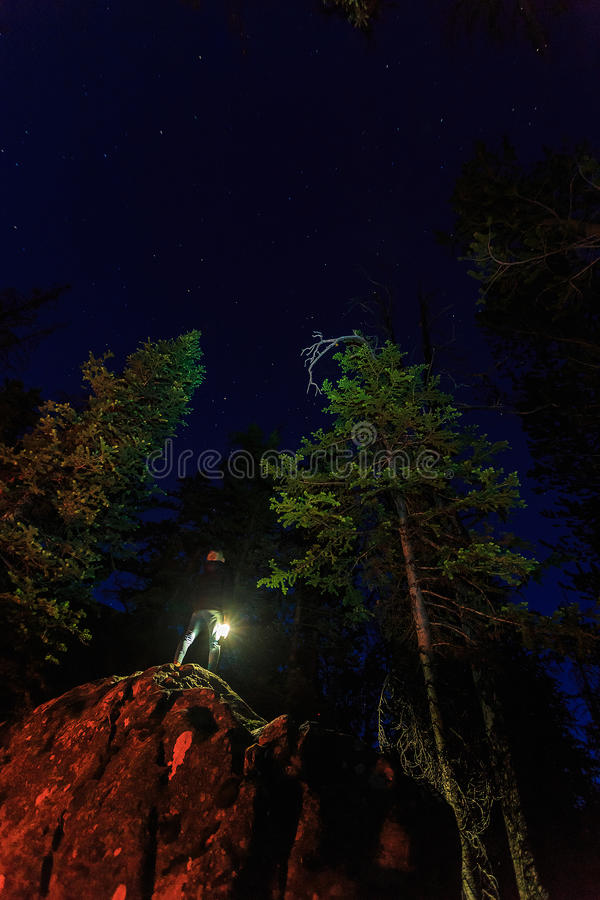 Looking up at the stars in the Utah mountains. royalty free stock photography