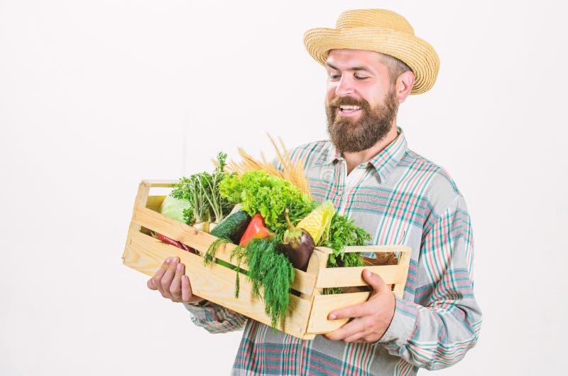 Looking at vegetables. seasonal vitamin food. Useful fruit and vegetable. organic and natural food. happy halloween. Bearded mature farmer. harvest festival stock images