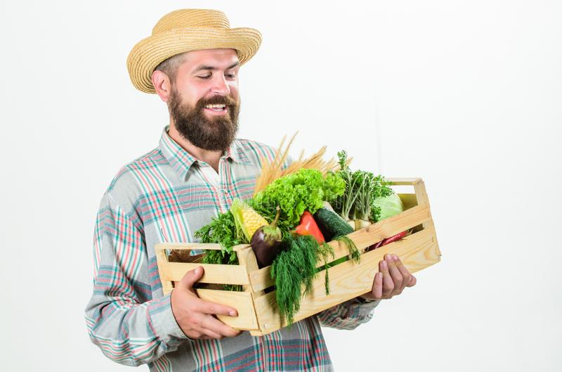 Looking at vegetables. seasonal vitamin food. Useful fruit and vegetable. organic and natural food. happy halloween. Bearded mature farmer. harvest festival stock photography