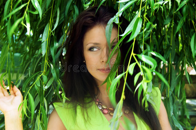 Looking through willow tree. Sensual brunette looking through willow tree stock images