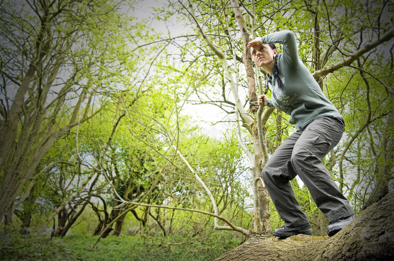 Download On the lookout stock photo. Image of adult, countryside - 24385974