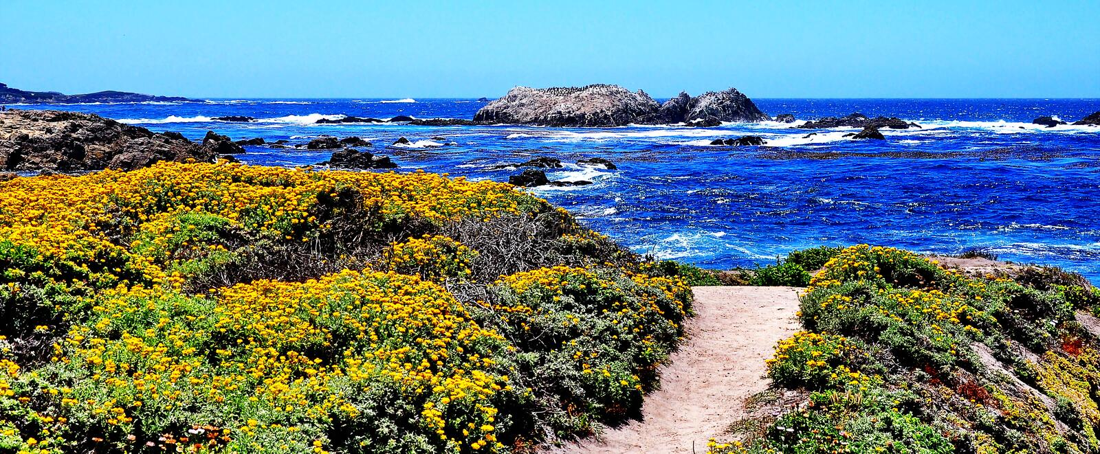 Lookout at Pebble Beach in California stock photography