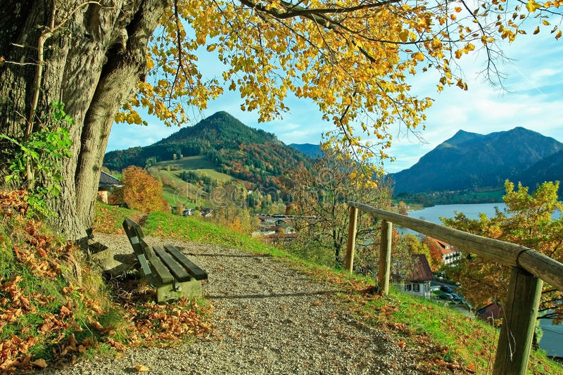 Lookout point at schliersee with bench in autumnal landscape. Lookout point with bench and lime tree, lake schliersee in autumnal landscape royalty free stock photography