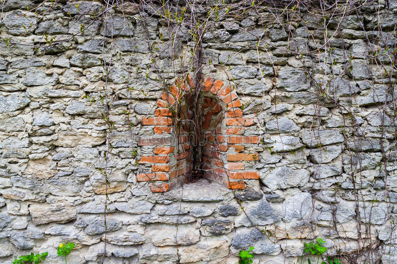 Loophole overgrown with lianas in stone wall . Ancient fortress. Concept of peace stock photo