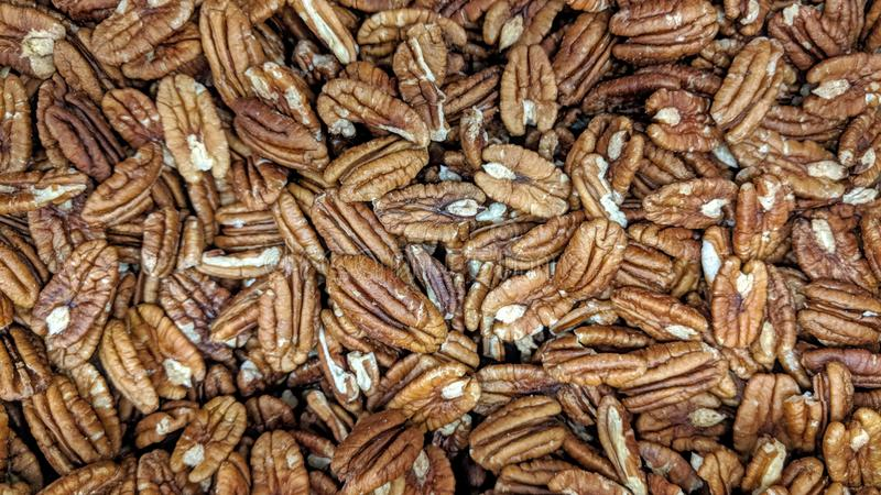 Loose pecan nuts. Can be used as background or wallpaper and for other possibility or to modify to your taste royalty free illustration