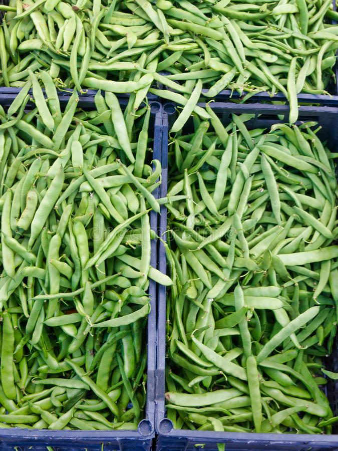 Loose String Beans at Fruit and Vegetable Market. Many loose green string beans for sale at a fresh fruit and vegetable market. Unpackaged produce, allows royalty free stock image