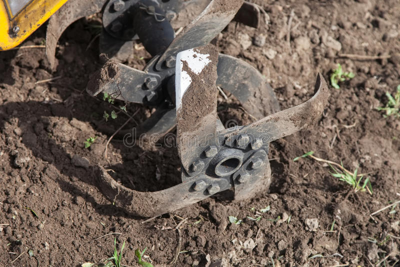 Loosens the soil cultivator close-up. Garden tiller to work, tractor cultivating field at spring, loosens soil by petrol cultivator close-up stock image