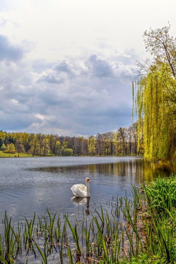 LopateckÃ-½ rybnÃk, Kozel-Schloss, Tschechische Republik stockbilder