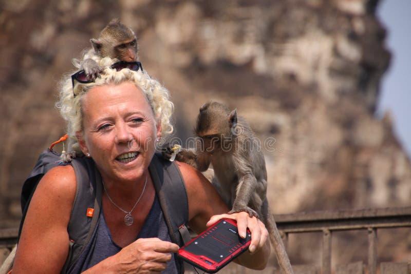 LOPBURI, TAILÂNDIA - 9 DE JANEIRO DE 2019: Mulher do turista atacada pelos macacos que roubam seus óculos de sol fotos de stock royalty free