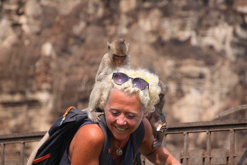LOPBURI, TAILANDIA - 9 DE ENERO DE 2019: Mujer turística atacada por los monos que roban sus gafas de sol imagenes de archivo